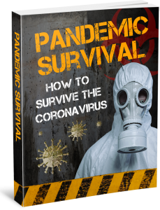 Pandemic Survival Review