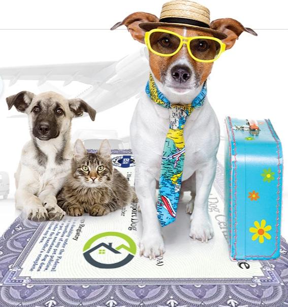American Service Pets Care Service