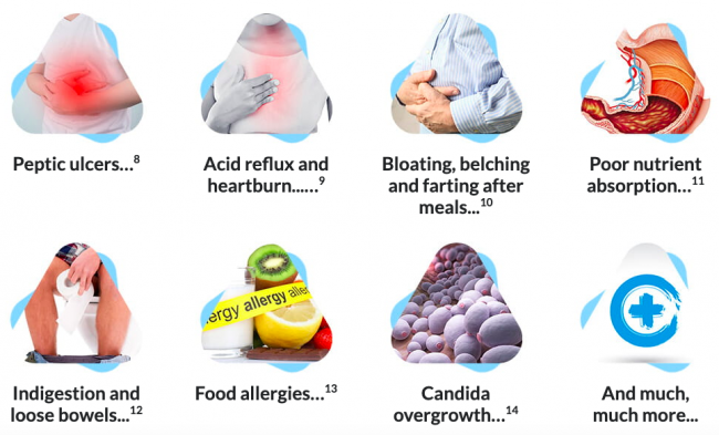 Peak Biome Bowel Guard Ingredients