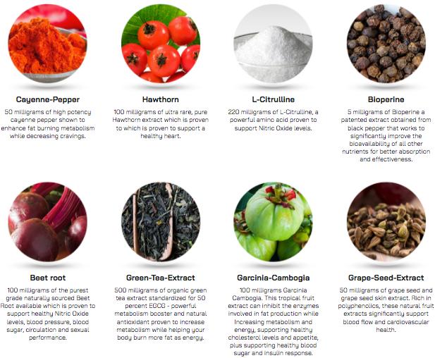 NitriLEAN Ingredients