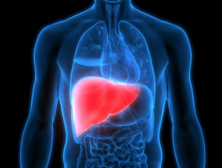 Advanced Liver Support Reviews