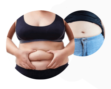 Flat Belly Burn Ingredients List