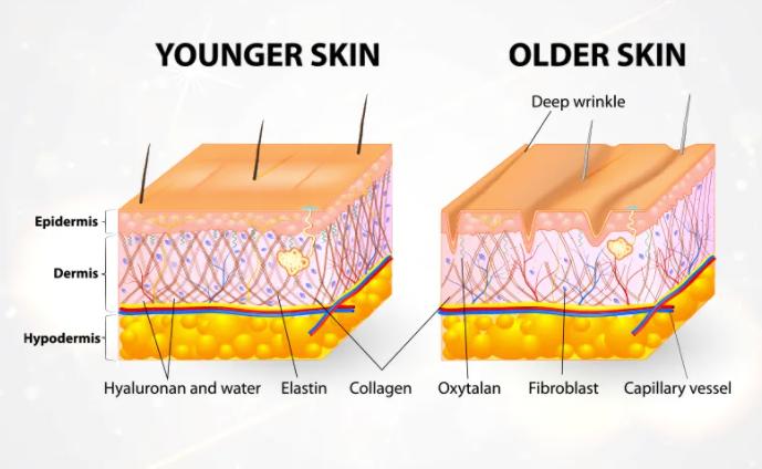 Lumiace Anti-Wrinkle Eye Cream Formula