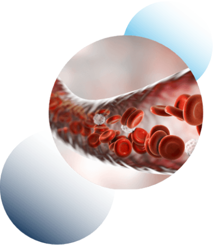 Advanced Bionutritionals Circutol Ingredients