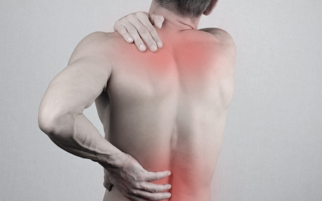 Back Pain Relief 4 Life Program User Review