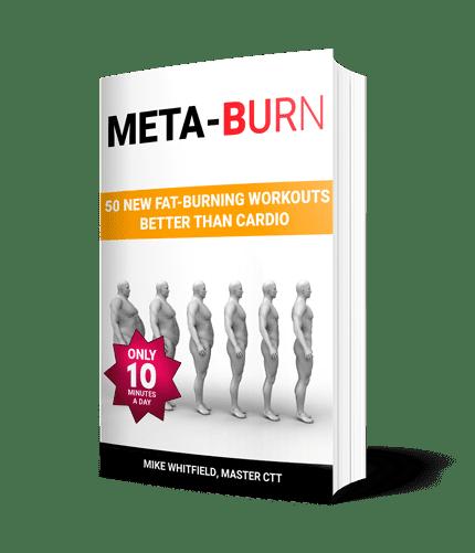 Meta Burn Program Review